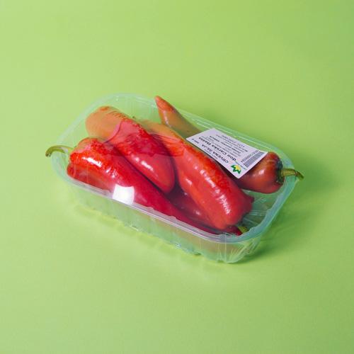 Crvena paprika šilja